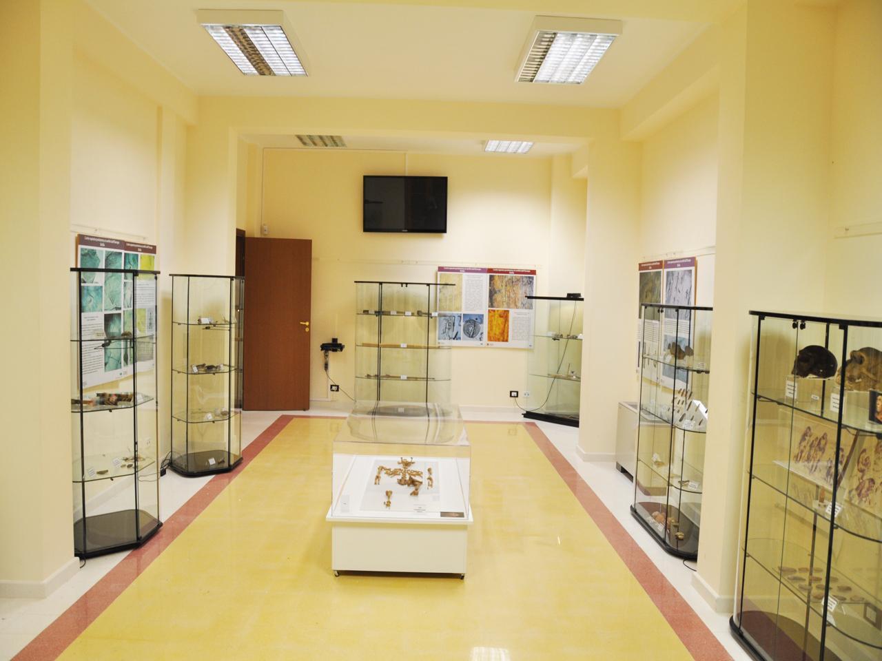 Museo Civico di Preistoria